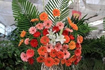 Fiori magia dei fiori for Disegni e prezzi del mazzo